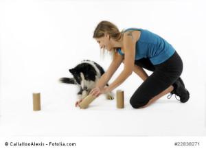 spielerisch lernen mit dem Hund