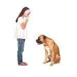 Bedürfnisse des Hundes verstehen