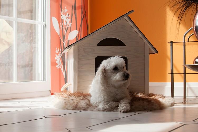 bildergalerie oles indoor hundeh tte. Black Bedroom Furniture Sets. Home Design Ideas