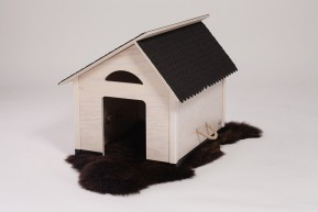 Sparangebot Haus S mit Fell